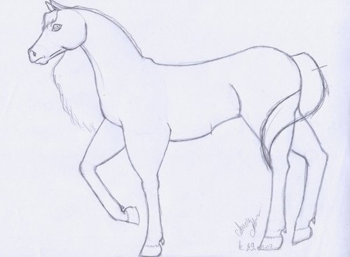 Comment dessiner un cheval en 6 etape - Cheval a dessiner facile ...