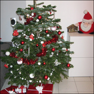 Comment d corer mon sapin for Decoration de sapin de noel