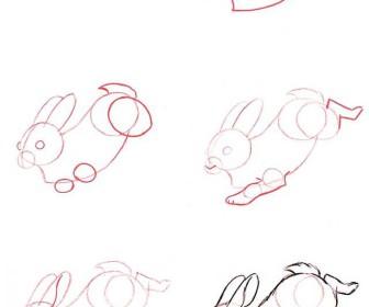 comment dessiner 1 lapin