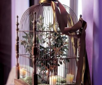 comment décorer une cage à oiseaux