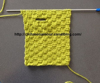 comment tricoter un pull pour chien