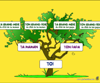 comment construire arbre généalogique