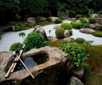 comment décorer un jardin zen