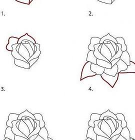 Comment dessiner rose - Belle fleur a dessiner ...
