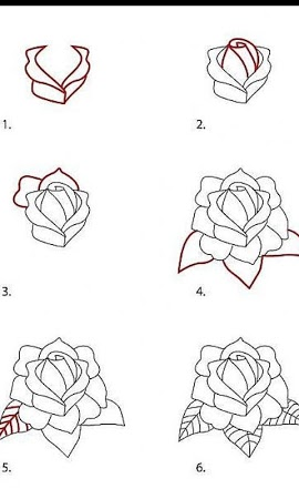 comment dessiner rose. Black Bedroom Furniture Sets. Home Design Ideas