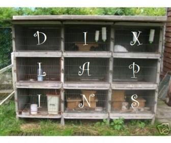comment mettre 10 lapins dans 9 cases