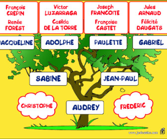 comment faire son arbre généalogique