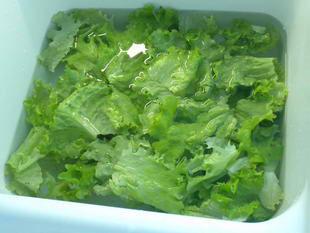 comment laver la salade