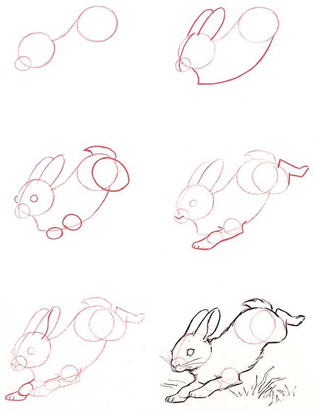Bien-aimé Attractive Comment Faire Un Lapin #1: Yeb Coloriage U2013 Comment  WQ79