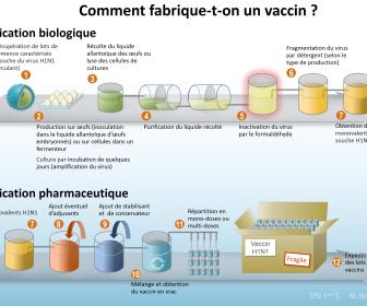 comment faire vaccin
