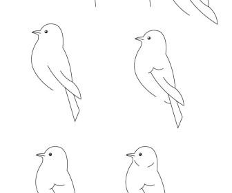 comment dessiner oiseau