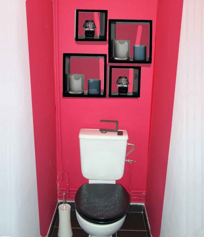 comment d corer les toilettes. Black Bedroom Furniture Sets. Home Design Ideas