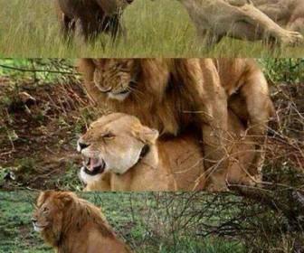 comment faire taire une femme