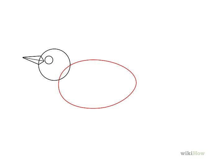 Comment dessiner un oiseau qui vole - Comment dessiner un oiseau facile ...