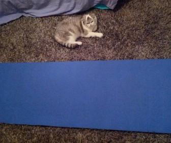 Laver tapis yoga