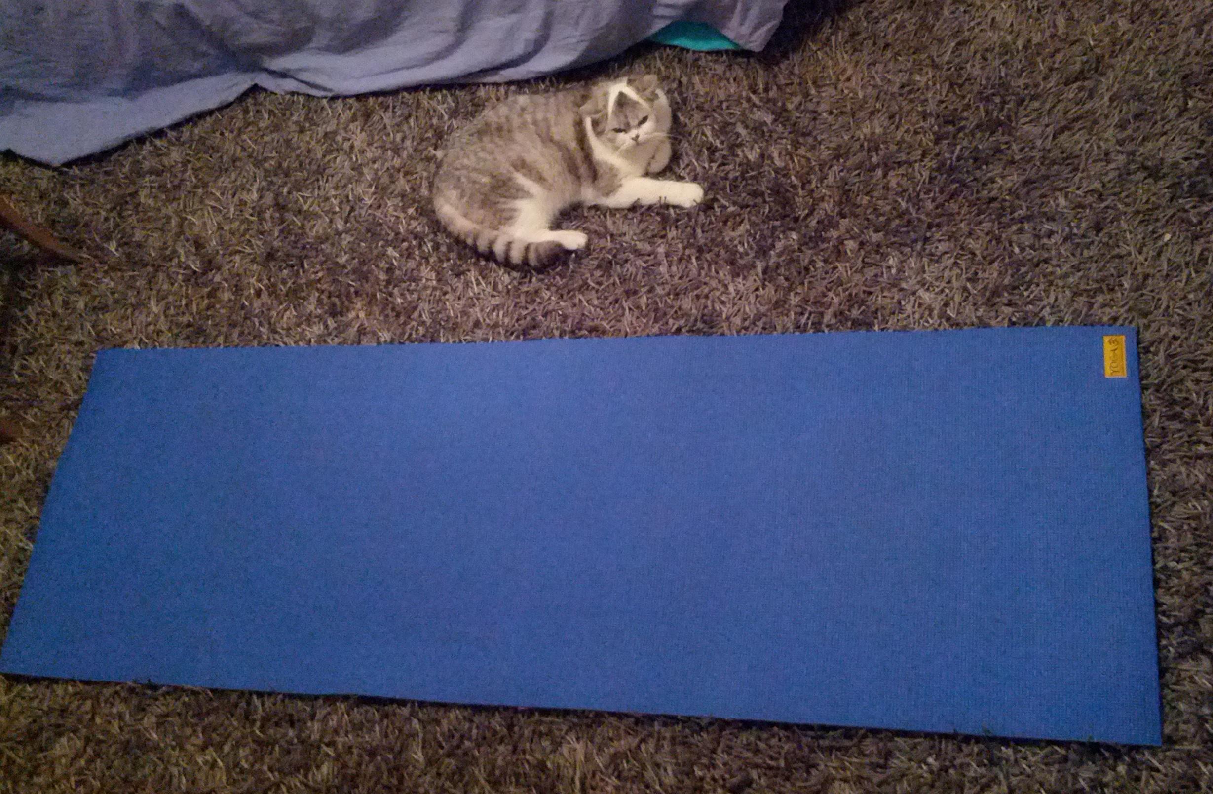 Comment laver tapis yoga for Housse tapis yoga