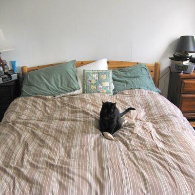 laver une couette 240 220 accessoire cuisine inox. Black Bedroom Furniture Sets. Home Design Ideas